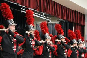 marching band performs